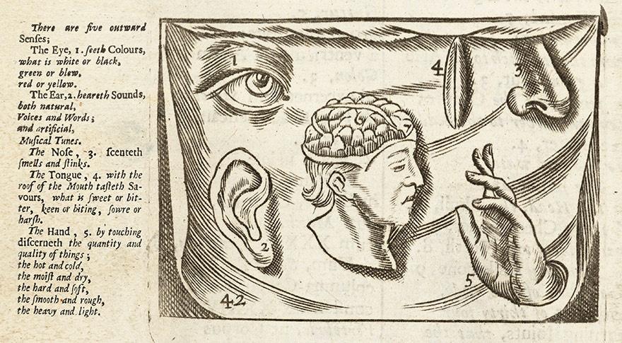 Orbis Pictus, first printed in 1658, describing the different senses