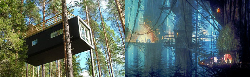 Tree hotel and Ewoks