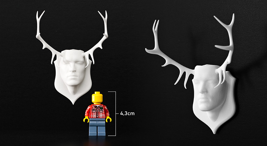 Antler head, size comparison