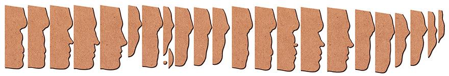 Head slices